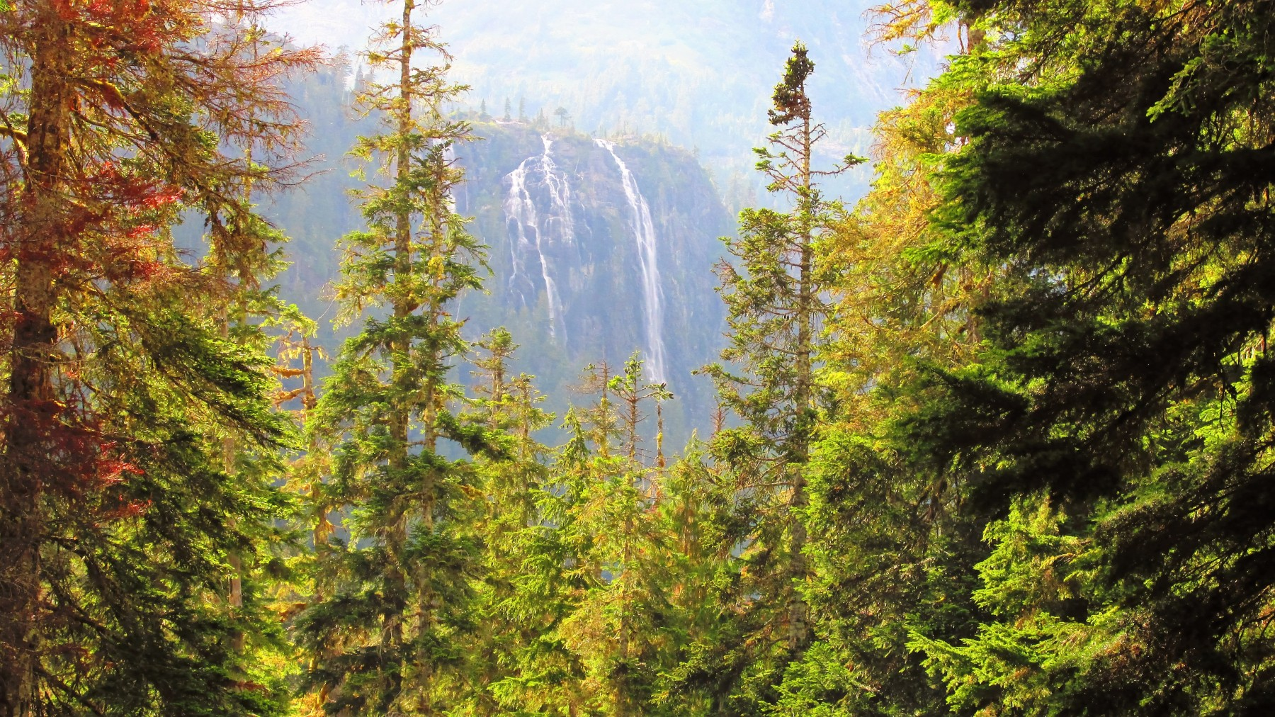 Must-See Waterfall on Vancouver Island