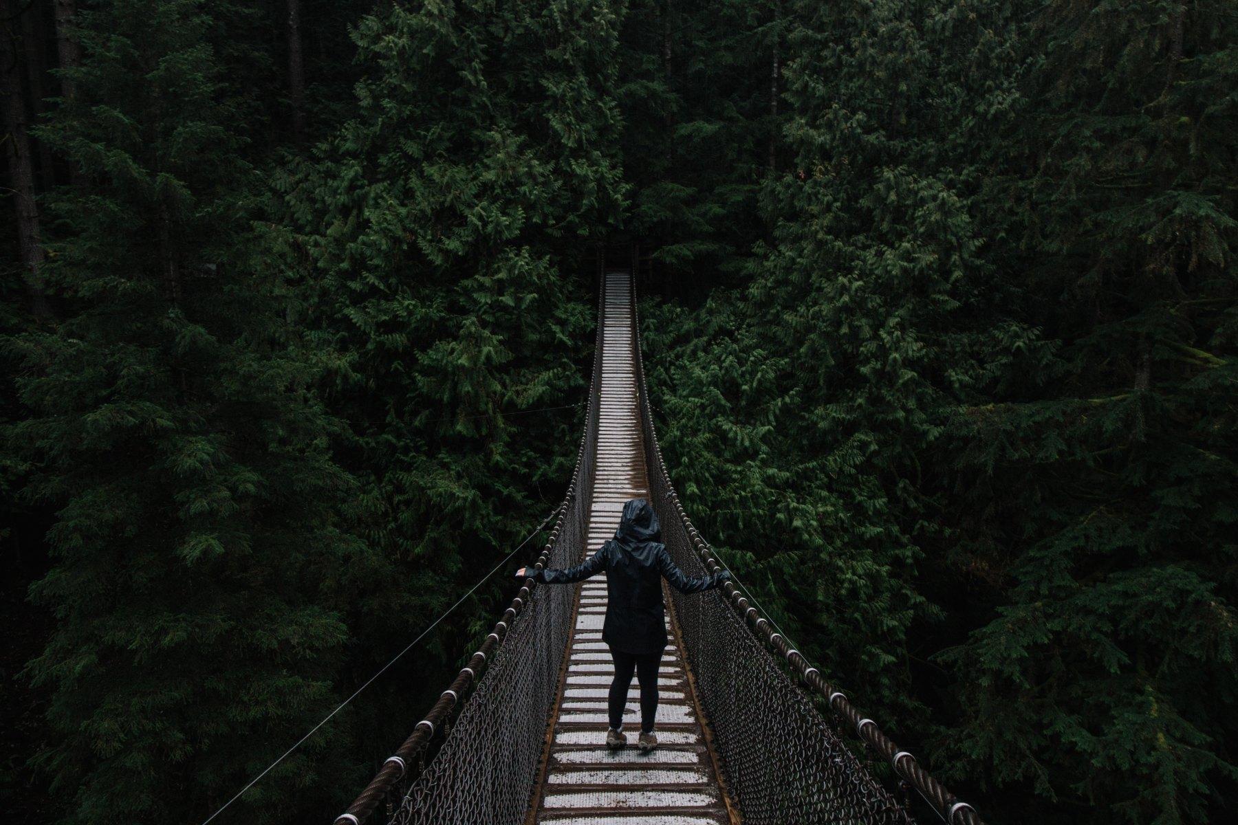 Lynn Canyon, North Vancouver