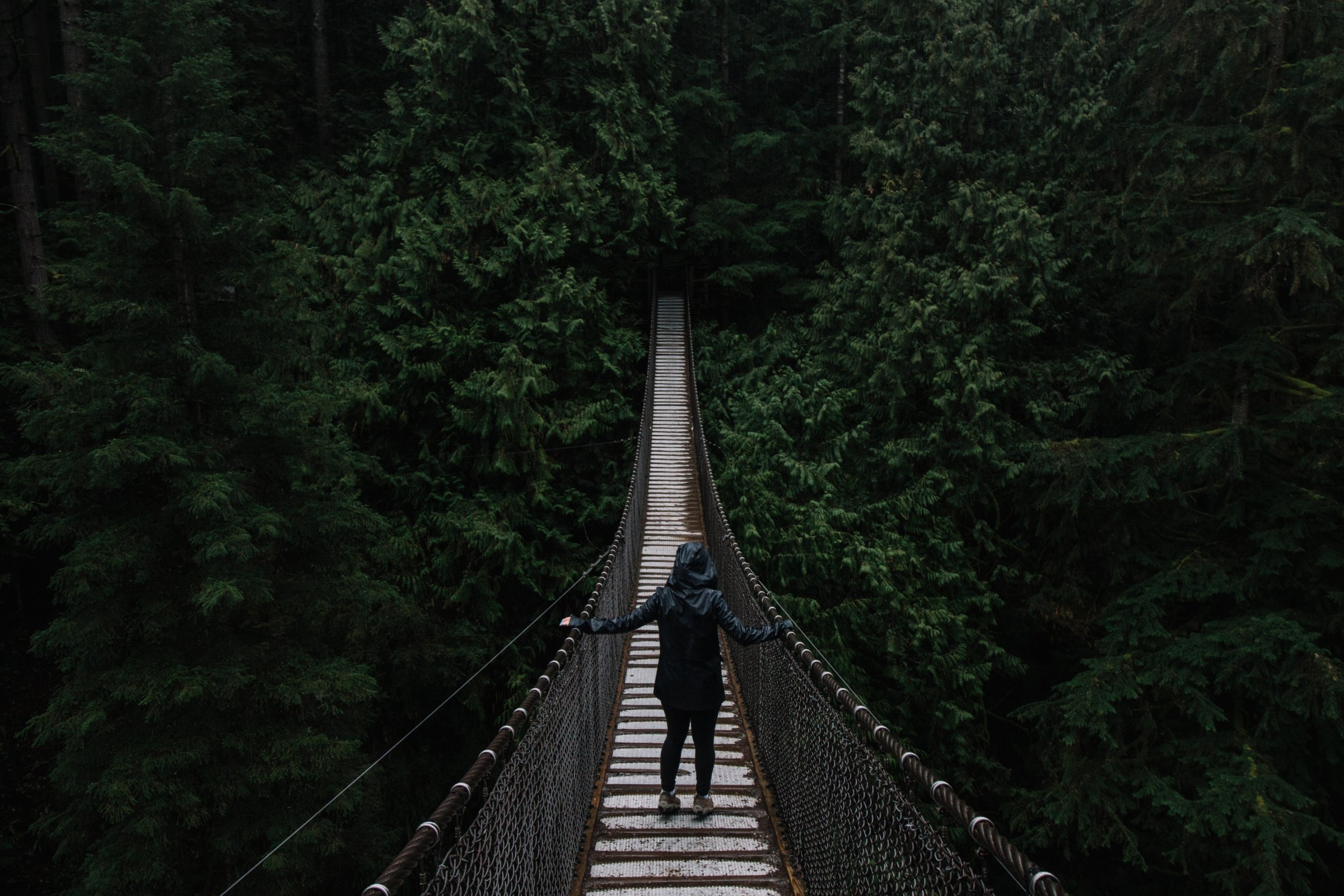 Lynn Canyon, North Vancouver